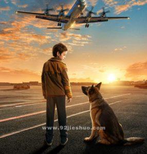 《忠犬帕尔玛》电影解说文案