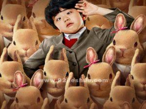 《驯兔记》电影解说文案